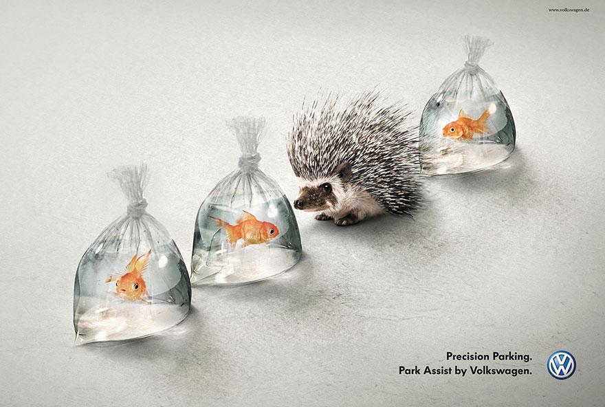 VW Digital Ad Digital advertising agency NJ